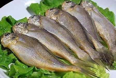 冷冻小黄鱼